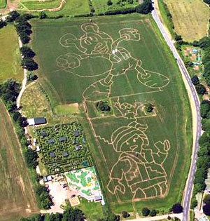 A photo from the air showing Elton Giant Mazes 2019